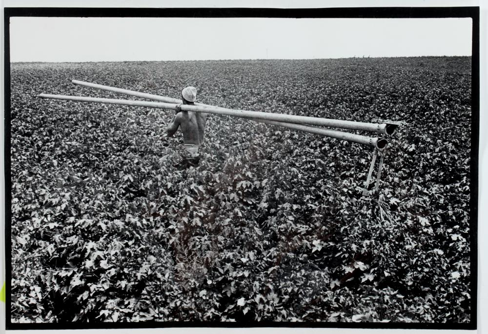 Laying irrigation pipes, Israel by Leonard Freed