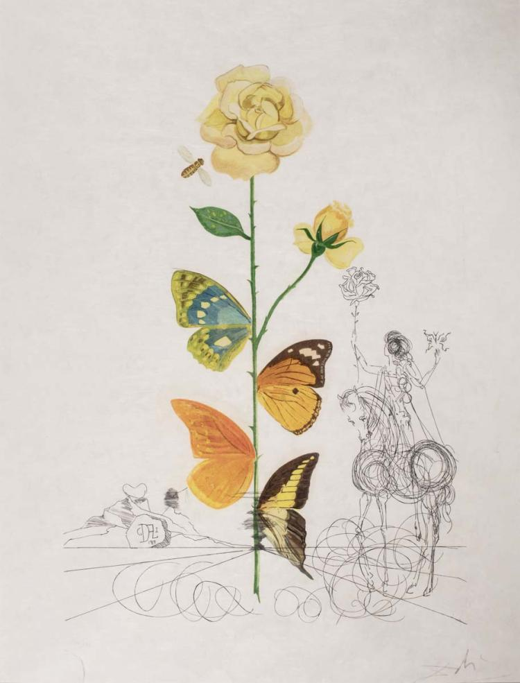 Flordali, Rose (Rosa papillo) (from Flora Dalinae) by Salvador Dali